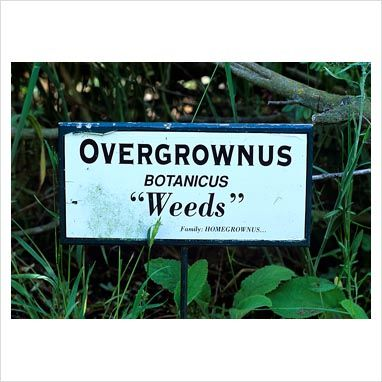 Funny Garden Signs | Got weeds? Here's a sign for you!