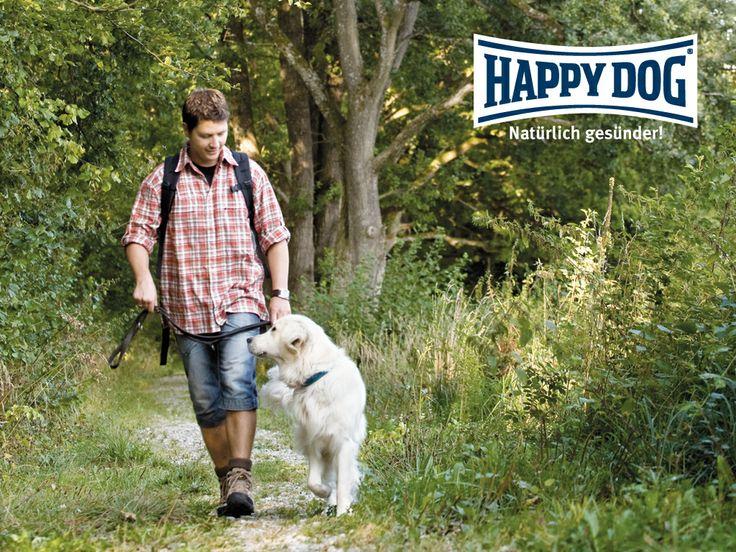 Happy Dog promo photo