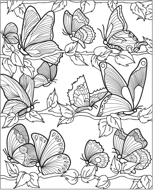 Butterfly Papillon Mariposas Vlinders Wings Gracefull Amazing Coloring pages colouring adult detailed advanced printable Kleuren voor volwassenen coloriage pour adulte anti-stress kleurplaat voor volwassenen Line Art Black and White http://www.doverpublications.com/zb/samples/802175/sample8b.html
