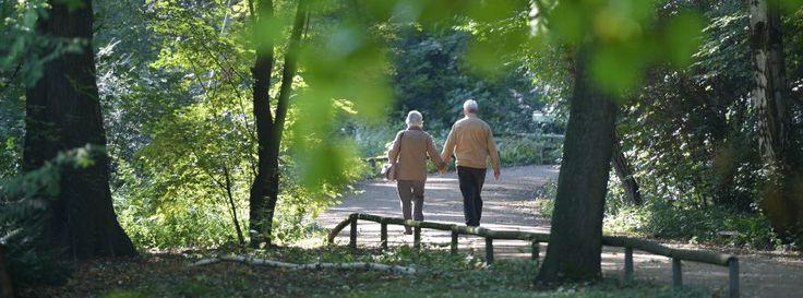 #Gesetzentwurf: #Rentenreformkostet 60 Milliarden Euro bis 2020...