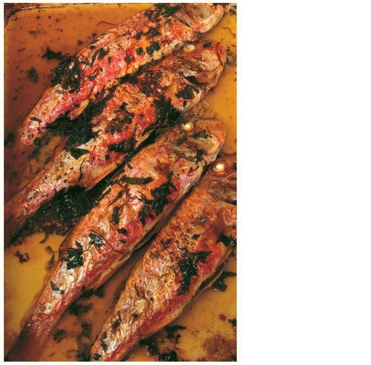 Schitterende kleuren, de roze vis en het groen gespikkelde bakvocht. Een deel van het genot leveren de nieuwe aardappeltjes in de saffraan-bespikkelde jus met munt. Een heerlijk licht gerecht voor een lentedag uit het Keukendagboek van Nigel Slager. http://www.fontaineuitgevers.nl/wp/wp-content/uploads/9789059564848-Keukendagboek.pdf