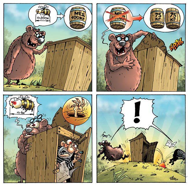 bear Приключения медведя!