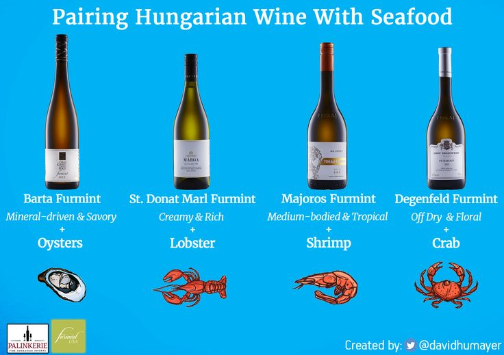 How to pair Hungarian wine with seafood like a pro