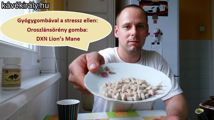 Gyógygombával a stressz ellen: Oroszlánsörény gomba: DXN Lion's Mane tab...