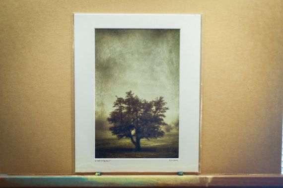 A Tree in the Fog 2 fine art photograph signed by ScottNorrisPhoto, $40.00