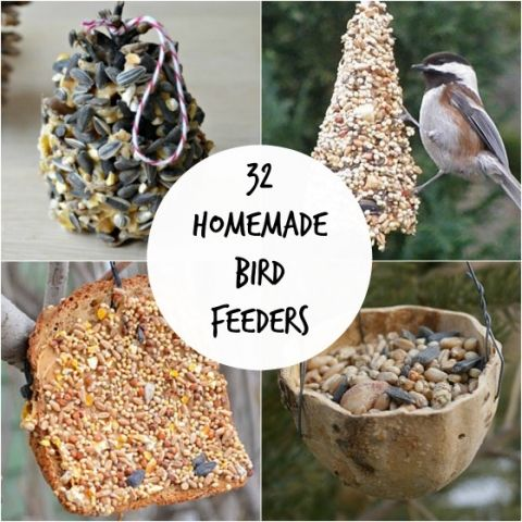 easy homemade bird feeders!! great project for the kids