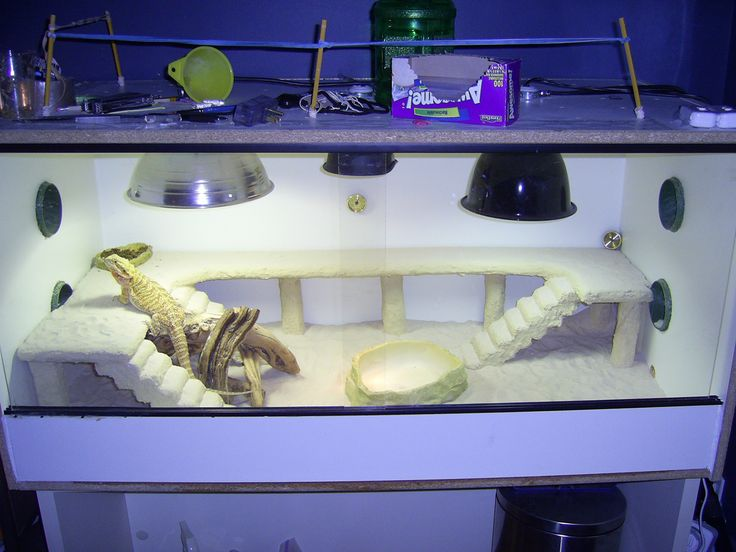 Diy custom enclosure viv bearded dragon                                                                                                                                                                                 More