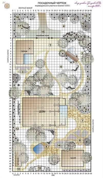 Посадочный чертеж ландшафтного проекта, схема посадки растений для малого сада на дачном участке и пейзажный лесной участок в коттеджном поселке