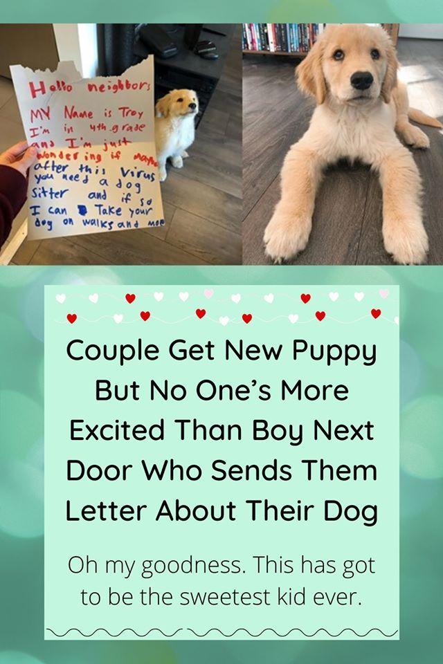 862332e48c3f957dfe804fd740d48273 - How To Get A Boy Dog To Hump You