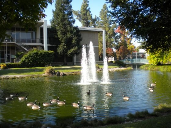 stanislaus state university turlock ca | California State University, Stanislaus (CSU Stan) Photos & Videos ...