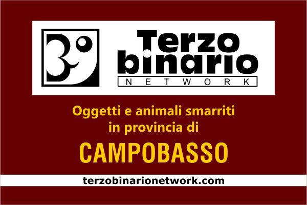 Oggetti e animali smarriti in provincia di Campobasso