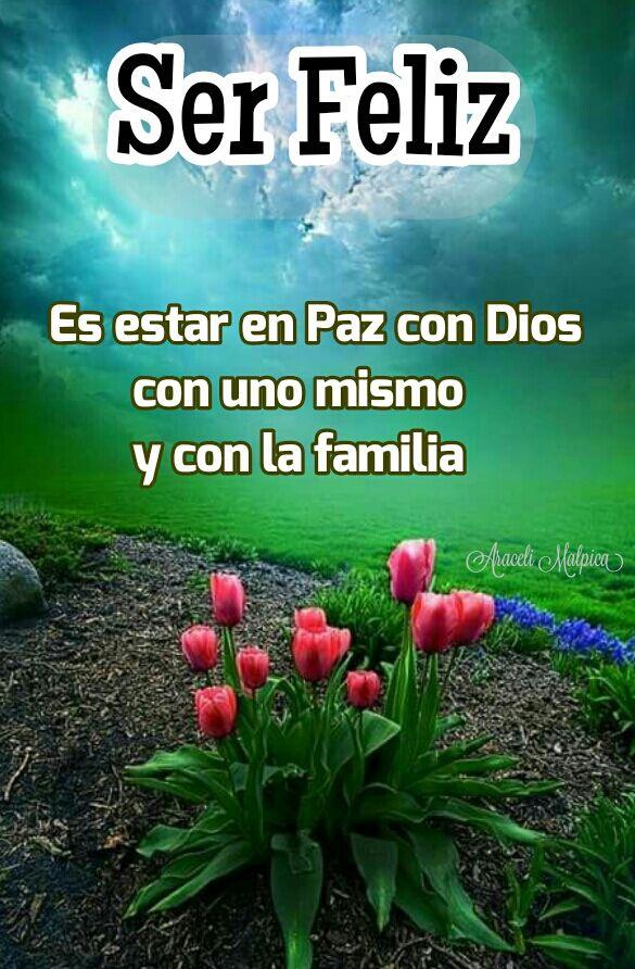 Ser Feliz Es Estar En Paz Con Dios Con Uno Mismo Y Con La Familia Ser Feliz Frases Bonitas De Amistad Frases De Sabiduria