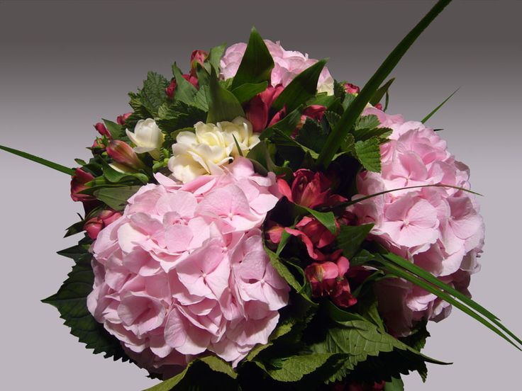 Hanami Fleurs