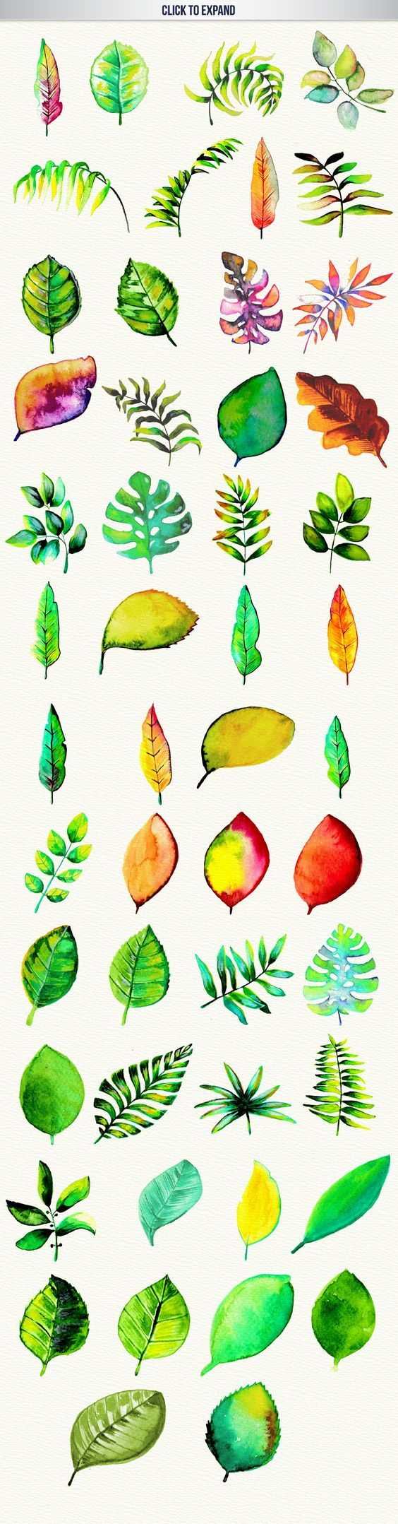Some amazing watercolor leaf clip art images! Love the design of the big palm leaves. Wow! #design Download: https://creativemarket.com/desenart/293115-50-High-Res-Watercolor-Leaves/?u=nexion: