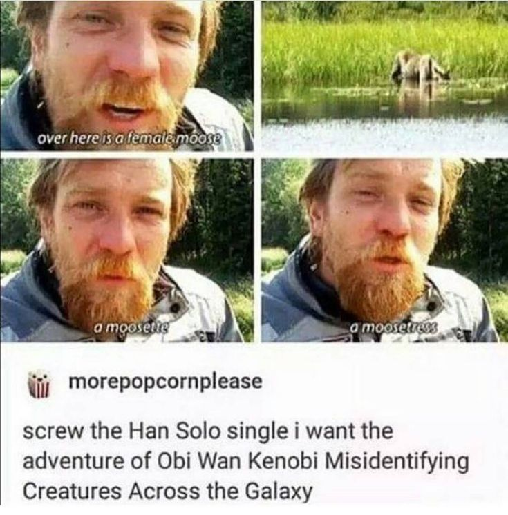 """1,061 Likes, 18 Comments - Spam Queen™ // Fandom Mom (@starwars.spam) on Instagram: """"Good morning!! What song are you obsessed with, rn? . Follow me (@starwars.spam) for more! ❤ .…"""""""
