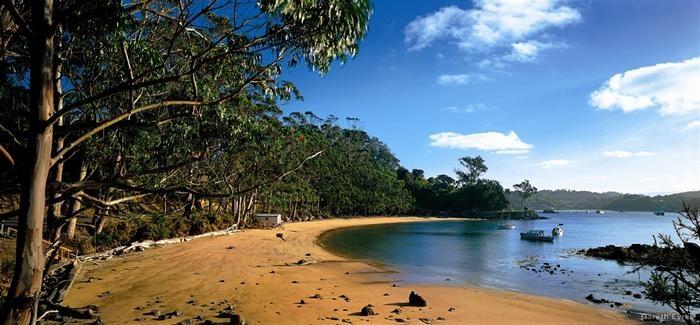 Halfmoon Bay, Stewart Island New Zealand