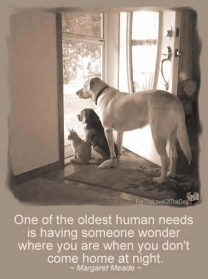 One of the oldest human needs is having someone wonder where you are when you don't come home at night.