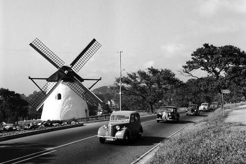 Mosterts Mill - 1955