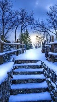 Schody w parku zasypane śniegiem