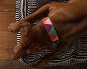 Purple Multi Color Triangle - Leather Embroidered Dog Collar by FILLYDOG