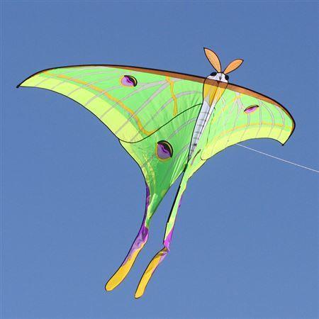 Luna Moth Kite | IntoTheWind.com