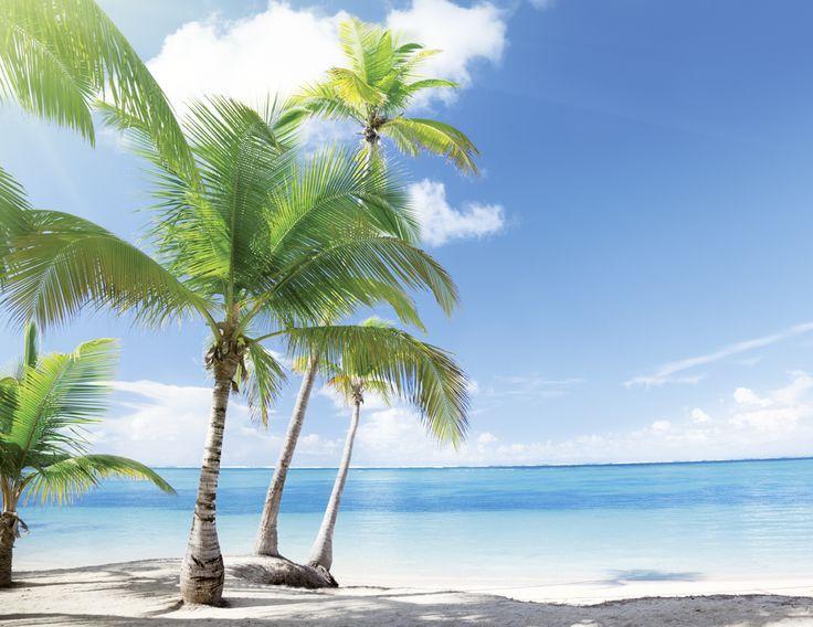 Dominikanische Republik #dominikanischerepublik #domrep #badeferien #hotelplan