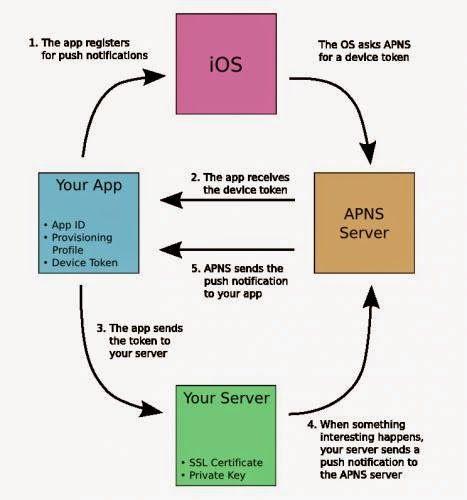 iPhone & iPad Application Development Help World: Apple Push Notification Services in iOS
