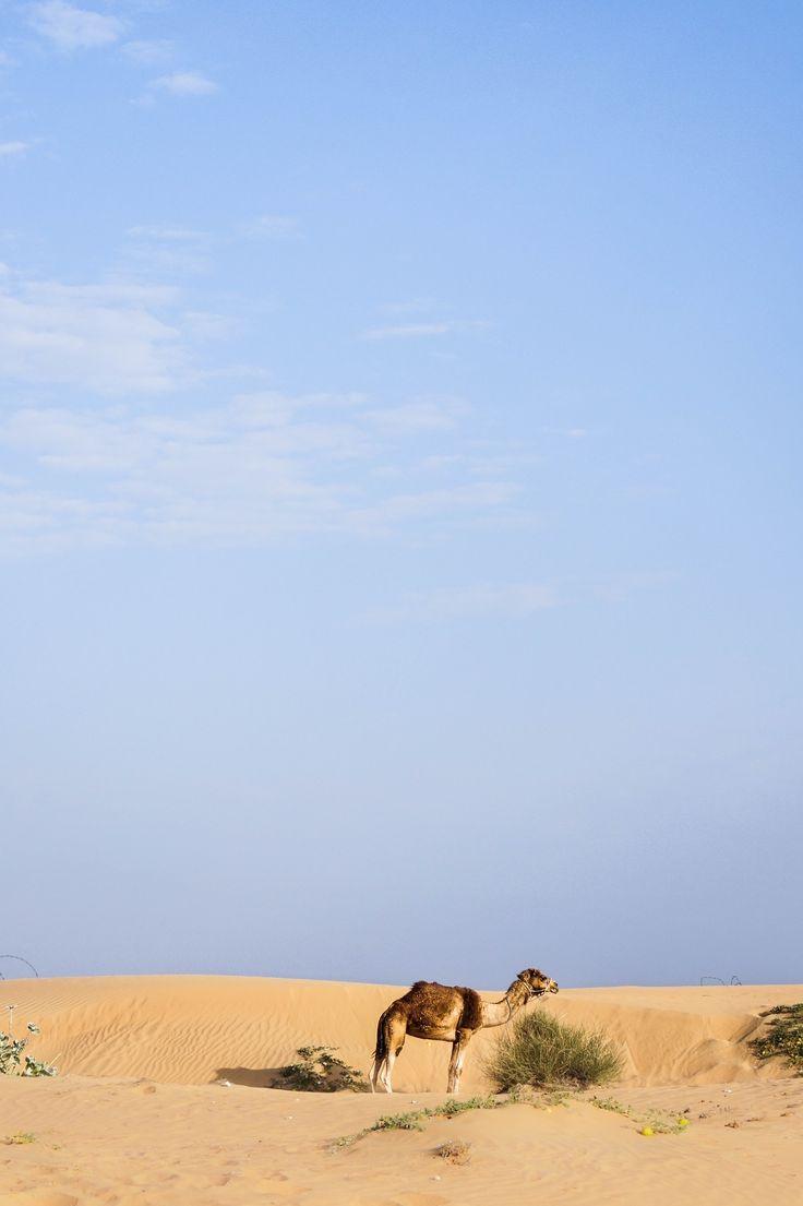 Somewhere in Lahbab Desert, Dubai. photo: Carve Design