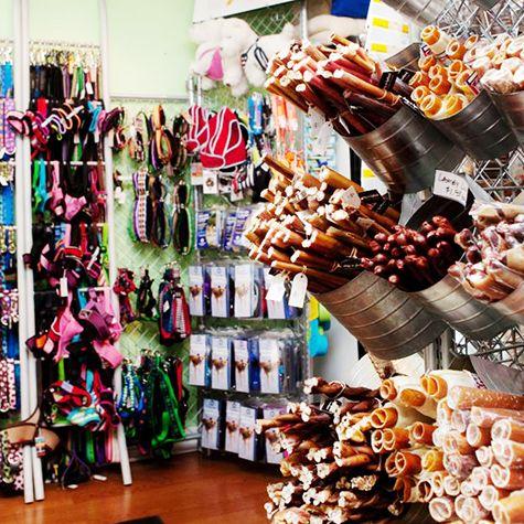 Display & te koop: kouwstokken in emmers (Dog-a-holics Boutique | GiftBar)