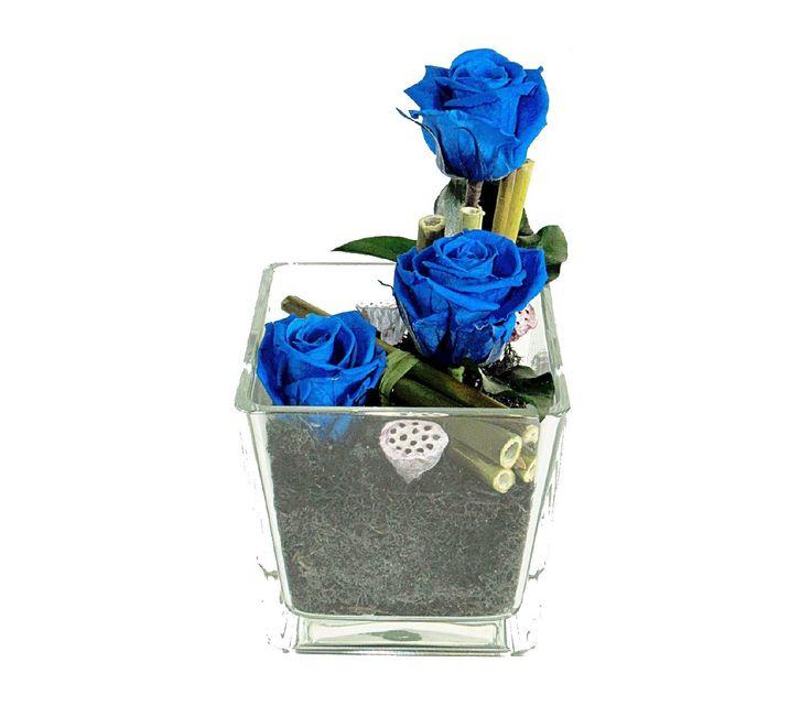 Idéal pour la naissance d'un petit garçon ! Composition de roses bleues naturelles stabilisées. http://themarose.com/home/6-composition-bambou.html