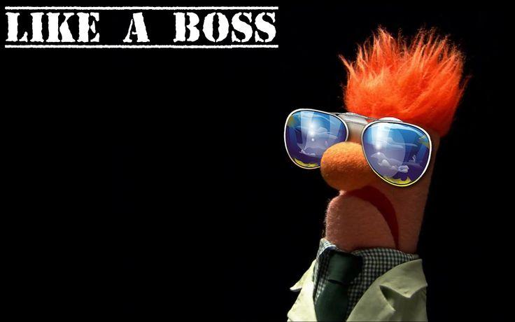 Funny Like A Boss Meme : Beaker the muppet show like a boss wallpaper background