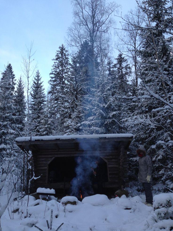 Joulupäivä. Finland. Laavu. Nuotio