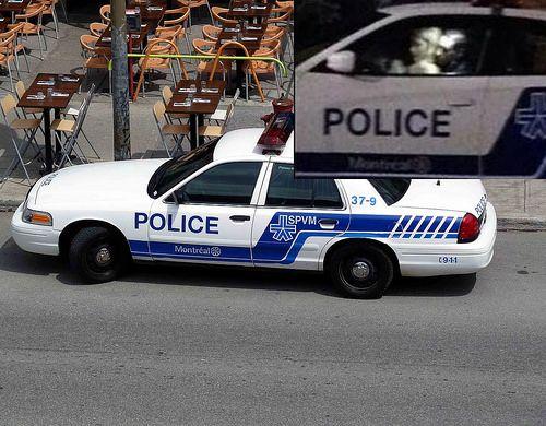POLICE DE MONTRÉAL | Flickr - SEXE DANS UNE VOITURE... https://www.flickr.com/photos/lestudio1/14268931366/