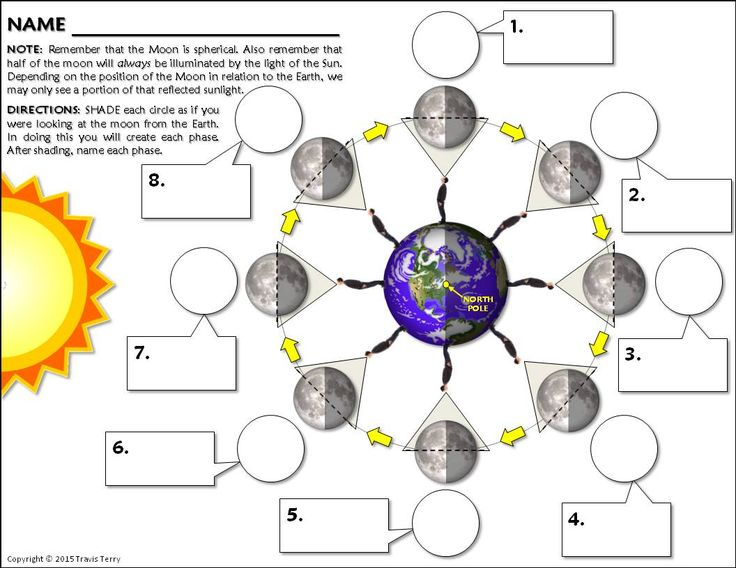 activity lunar phases The phases of the moon depend on how much of the sunlit side of the moon faces earth students create a model to show the changes that occur as a result of the.