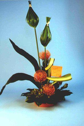 Protea arrangement:  Sunburst Variegated Flax  Tied Papyrus, Dry Bark