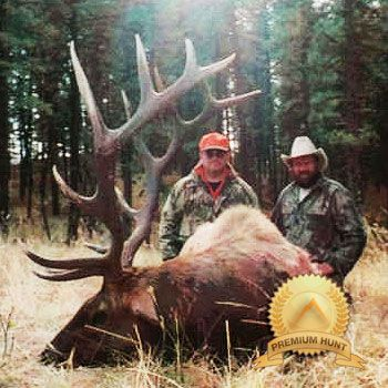 Idaho elk hunting Outfitter
