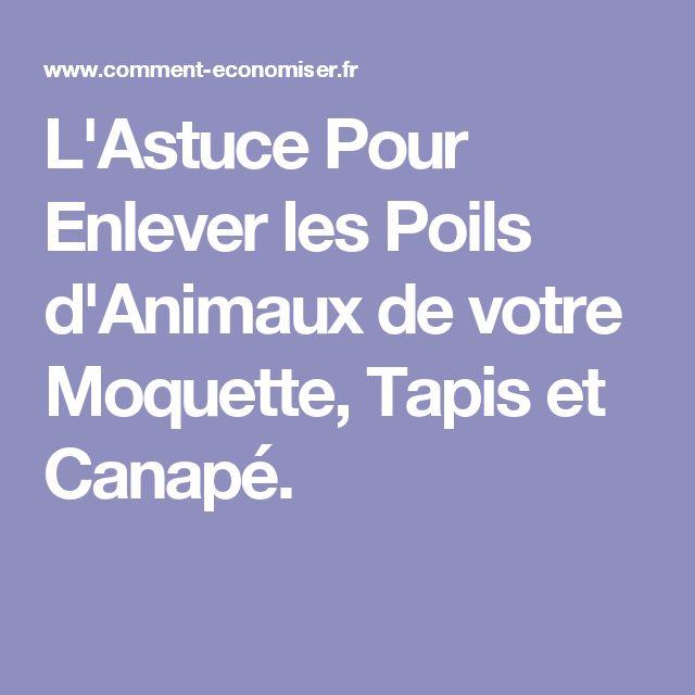 L'Astuce Pour Enlever les Poils d'Animaux de votre Moquette, Tapis et Canapé.