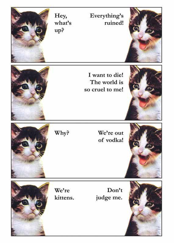 Vodka Kittens 11 x 14 Art Cat Print