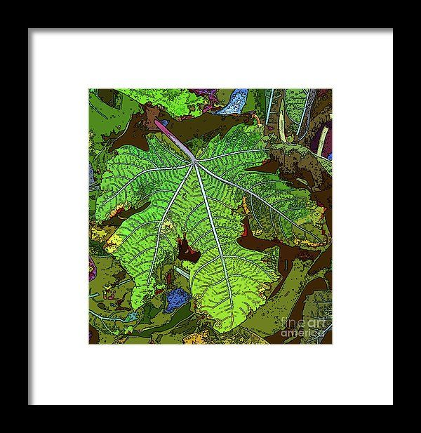 Nature Framed Print featuring the digital art La Hoja by Don Pedro De Gracia #photography #artforsale #homedecor #wallart