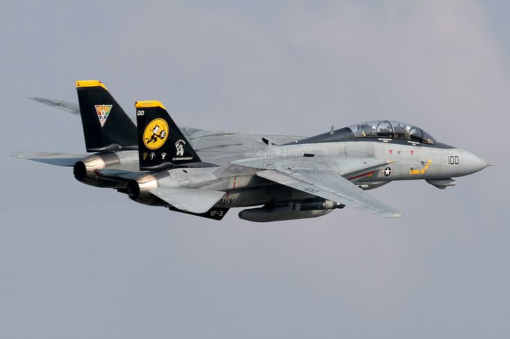 F-14 Tomcat the most iconic U.S. fighter since the P-51. That little film it starred in helped a bit.