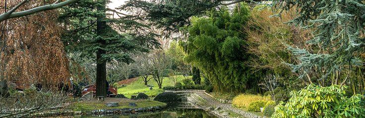 https://www.cityspotters.com Bois de Boulogne, een prachtig groot park in Parijs. Frankrijk, stedentrip, Parijs, vakantie, parken, citytrip, tips