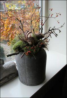 prachtige pot met takken, mos en een grote amaryllisbol
