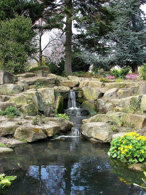 Sheffield Botanical Gardens, Sheffield  #socialsheffield #sheffield #gardens…