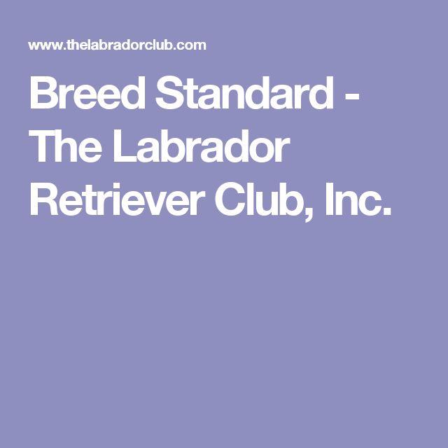 Breed Standard - The Labrador Retriever Club, Inc.