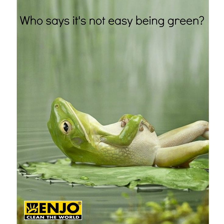 ENJO makes it so easy! Ask me how!