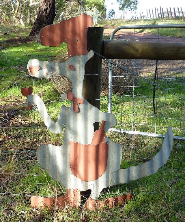 Gourmet kangaroo on the Heysen Trail, Adelaide Hills
