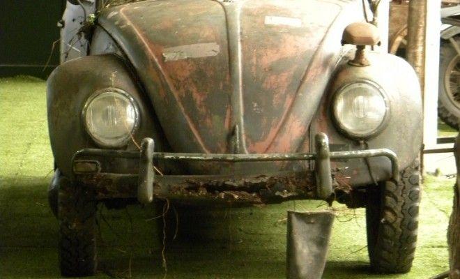 VW Kever of broodje aap - Auto Motor Klassiek
