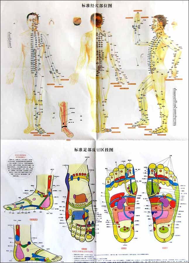 profile waltham oriental foot reflex