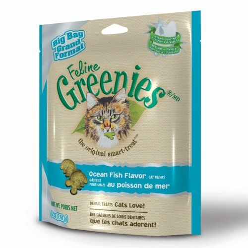 FELINE GREENIES 6oz Bag Ocean Fish * For more information, visit now : Best Cat Food
