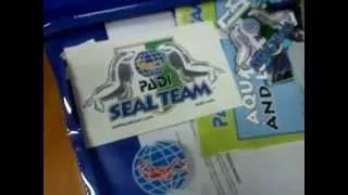 Seal Team. Basenowy kurs nurkowania dla dzieci. Padi